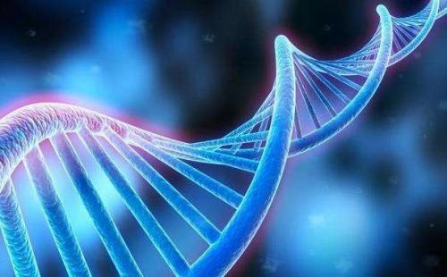 """聊聊""""基因编辑婴儿""""背后的专利故事"""